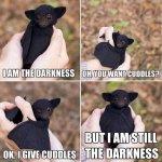 bat_is_the_darkness.jpg