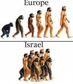 evolution-of-israelis.jpg